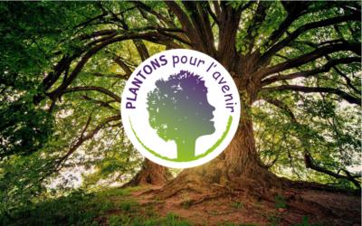 France Paratonnerres participe au reboisement avec Plantons pour l'avenir